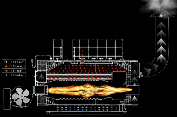 WNS-Steam-Boiler-Layout